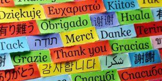 هفت زبان اصلی دنیا